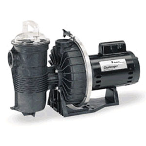 Pentair Challenger High Pressure Pump