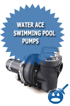 Water Ace Swimming Pool Pump Review Wet Head Media