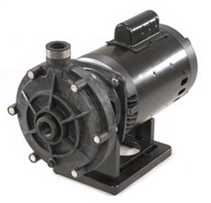 Polaris Booster Pump
