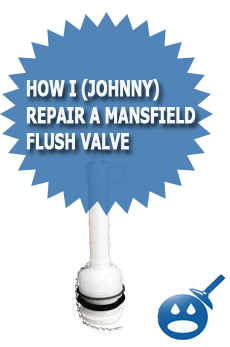 How I (Johnny) Repair A Mansfield Flush Valve