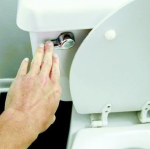 http://wetheadmedia.com/wp-content/uploads/pictures/2012/10/Top-5-Toilet-Flush-Problems-300x298.jpg