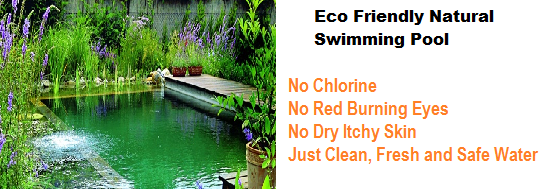 eco-friendly-pool-system